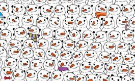 Kardan Adamlar Arasındaki Pandayı Bulmak Neden Çok Zordur?