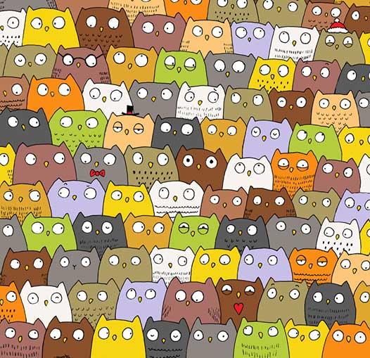 kardan-adamlar-arasindaki-pandayi-bulmak-neden-cok-zordur-kedi-bilimfilicom