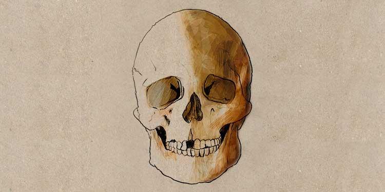 La Brana 1 adı verilen bu avcı toplayıcı insanda hem Avrupa hem de Afrika genlerinin bir kombinasyonunun bulunması heyecan verici olarak karşılandı. Bununla birlikte kafatasından yola çıkılarak yüz şekli ve görünüşü tekrar yapılandırıldı.