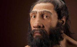 Neandertal ve İnsan Yüz Gelişimindeki Fark