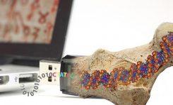 İnsanlığın Tüm Bilgileri DNA'da Kalıcı Olarak Saklanabilir
