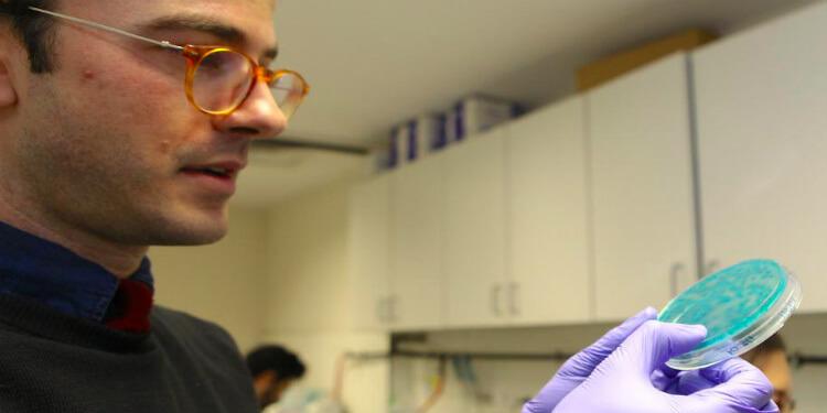 Antibiyotik Direncini Kontrol Altına Almak İçin Yenilikçi Enzim Biyoreaktörleri