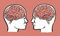 Erkek ve Kadın Beyinleri Farklı Şekilde Yaşlanıyor