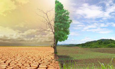 Dünya'da Hangi Bölgeler, İklim Değişikliklerinden Daha Fazla Etkileniyor?