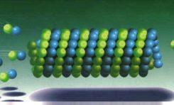 Hücre İçi Mikrotübül Rayların Kurulması ile İlgili Yeni Keşif
