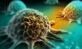 Kanser Dosyası : Kanser Nedir?