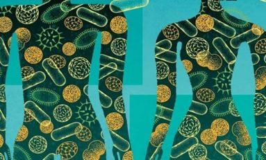 Mikrobiyom Hücre Sayısının Sekiz Kat Daha Az Olduğu Keşfedildi