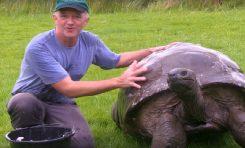 Dev Kaplumbağa Jonathan 184 Yıl Sonra İlk Kez Banyo Yaptı