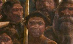 Neandertal ve İnsanın Son Ortak Atasına Ait DNA Sekanslaması Tamamlandı