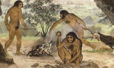 Dilimlenmiş Et, İnsan Evrimini Nasıl Yönlendirdi?