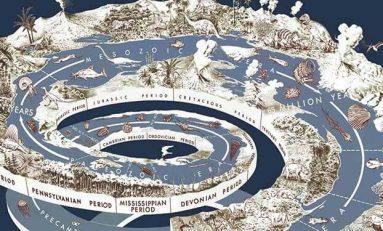 """Evrim Teorisine Dair Mitler-5: """"Evrim, Çevreye Mükemmel Uyum Sağlayan Canlıları Üretir"""""""