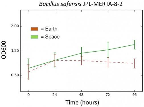 uzayi-dunyadan-daha-rahat-bulan-bakteriye-rastlandi-bilimfilicom