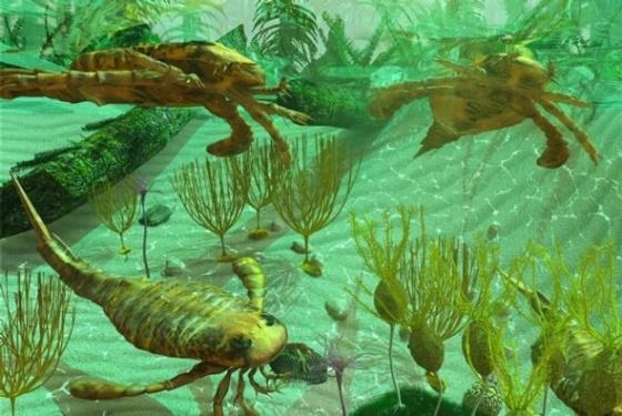 İlk artropodlar ve okyanuslardaki canlı çeşitliliği