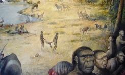Homininlerin Habitatları İlk Kez Yapılandırıldı