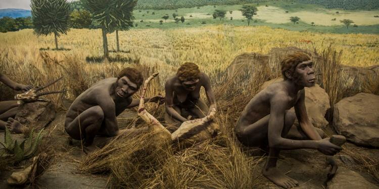 Homo sapiens ve Alet Yapımı: İlk Kasaplar
