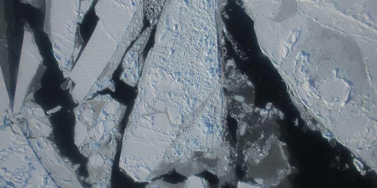Kuzey Kutbu Sorununda Çözüme Doğru Koşar Adım