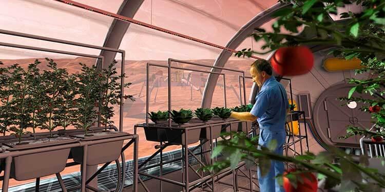 Mars Toprağında Bitki Yetiştirme Çalışmaları Devam Ediyor