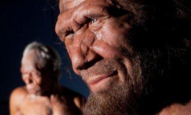 Neandertaller Nasıl Yok Oldu?