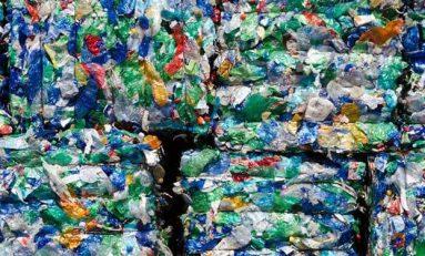 PET Plastiği Çözebilen Plastik Yiyici Bakteri Keşfedildi