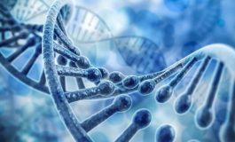 DNA'dan Yapılan Dünyanın En Küçük Termometresi