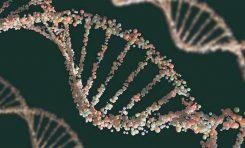 Dünya DNA Günü ve DNA