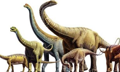 Dünya Üzerinde Kaç Dinozor Türü Yaşadı?