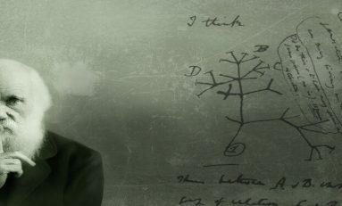 """Evrim Teorisi'ne Dair Mitler-6: """"Evrim Bilimsel Değildir Çünkü Test Edilemez Ya Da Yanlışlanamaz"""""""