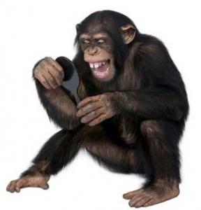 gulmek-evrimsel-bir-eylemdir-1-bilimfilicom