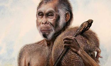 Hobit Türü Homo floresiensis'i, Yok Olmaya İnsanlar mı Sürükledi?
