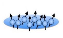 480 Atom Arasında Bell Bağlaşıklıkları Gözlemlendi