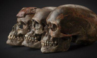 Buzul Çağı Avrupası'nın Genetik Tarihi