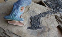 Çekiç Kafalı, Bilinen En Eski Deniz Otçulu