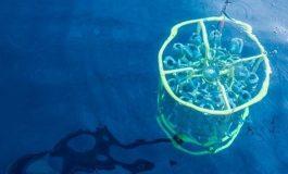 Dünya Atmosferine Bakteri Etkisi