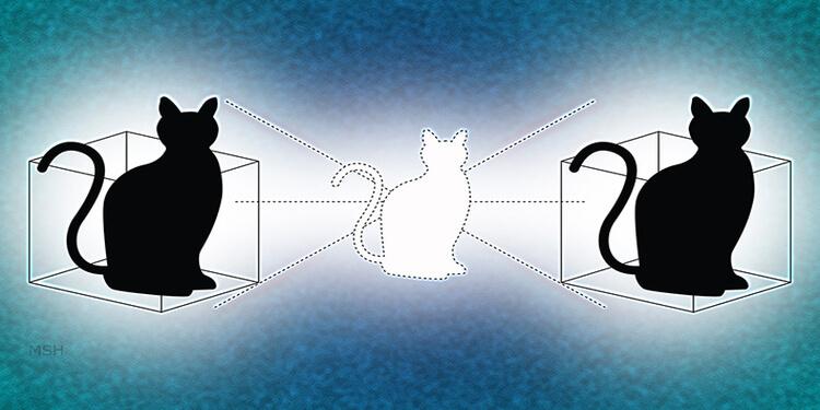 Schrödinger'in Kedisi Aynı Anda İki Farklı Kutuya Saklanabiliyor
