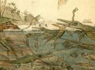 Mezozoik Deniz Sürüngenlerinin Hızlı Yükselişi