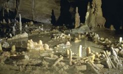 Neandertaller 175.000 Yıl Önce Halka Yapılar İnşa Etti