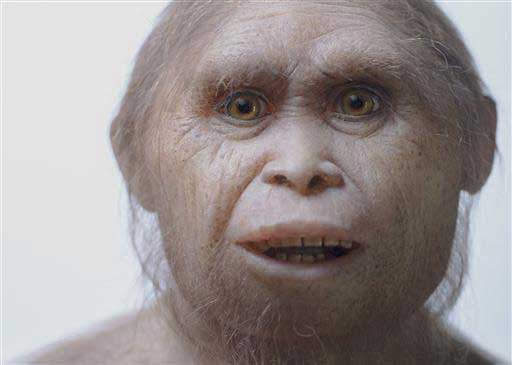 2015 yılında Kinez Riza tarafından çekilen bu fotoğraf Homo floresiensis türünün, Sangiran Museum'daki Elisabeth Daynes Atölyesi'nde yapılandırılmış modelini gösteriyor. Telif : Kinez Riza