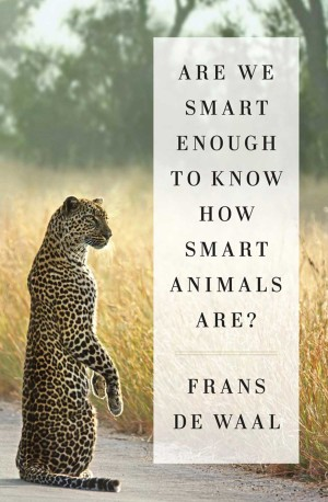 hayvanlarin-ne-kadar-zeki-olduklarini-nasil-anlayabiliriz-1