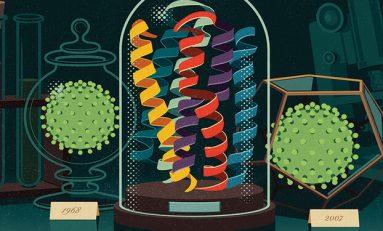 En Temel Ölçekte Evrim: Amino Asit Sıra Değişimleri