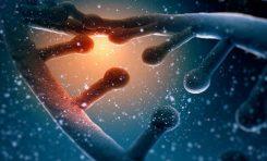 DNA Eşlenmesindeki Evrimsel Gizem: Eşlenme Yönü