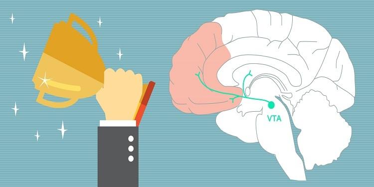 Dopamin Nedir ve Bağımlılıklarımızın Sorumlusu Dopamin mi?