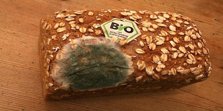 Ekmek Küfünden Şarj Edilebilir Bataryalar Üretilebilir mi?