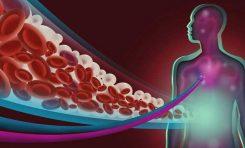 İnsanlar, Kan Şekeri Seviyelerini Bilinçdışı Kontrol Edebiliyor