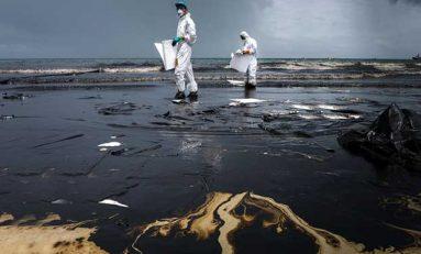 Petrol Döküntülerini Temizlemek İçin Bakteriler Kullanılabilir mi?