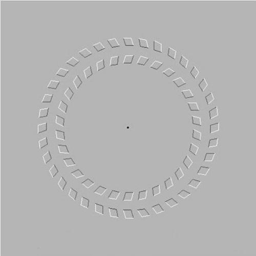 pinna-illuzyonu-bilimfilicom