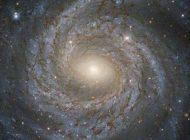 Fizikçiler Evrendeki Muhtemel Beşinci Temel Kuvvetin Varlığını Doğruladı