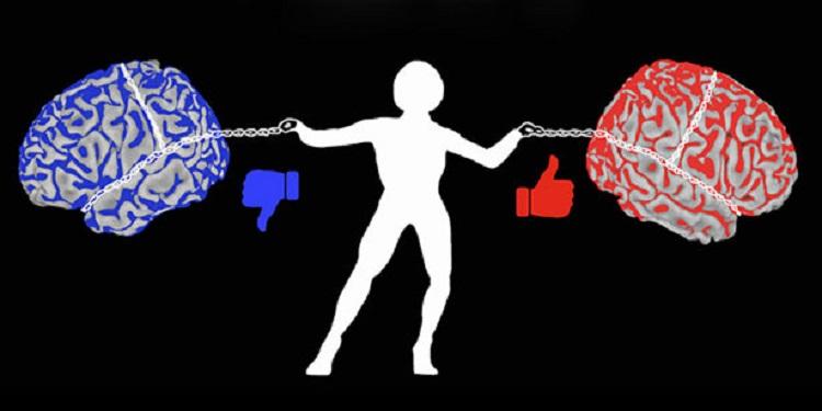 Duygusal Çatışma Sürecinde Beyinde Neler Oluyor?