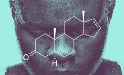 Erkek Kimyası Dişileri Üreme İçin Hazırlarken Yaşlanmalarını Hızlandırıyor