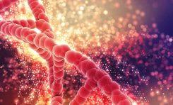 Kalıtsal Hastalıkların Varlığı Bulaşıcı Hastalıklara Karşı Korunmamızın Bedeli