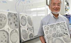 2016 Nobel Fizyoloji veya Tıp Ödülü Ohsumi'ye - Lizozoma Sığan 3. Ödül